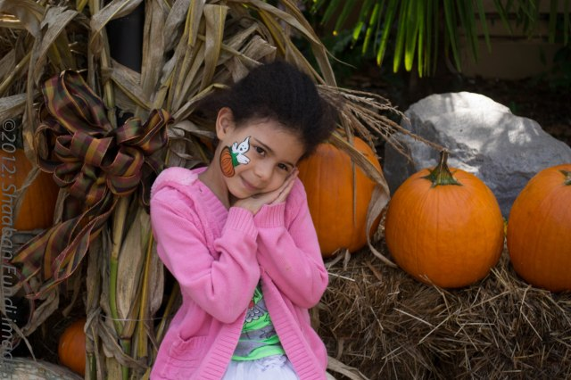 Pumpkins Festival Stone Mountain, GA